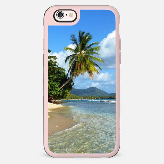 Lone Palm Tree on Quiet, Sunny Caribbean Beach