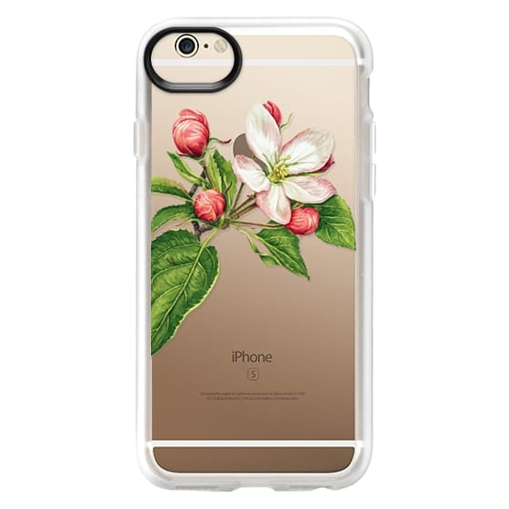 iPhone 6 Cases - Apple blossom