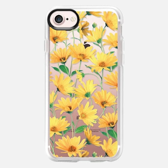 Golden Yellow Daisies on clear
