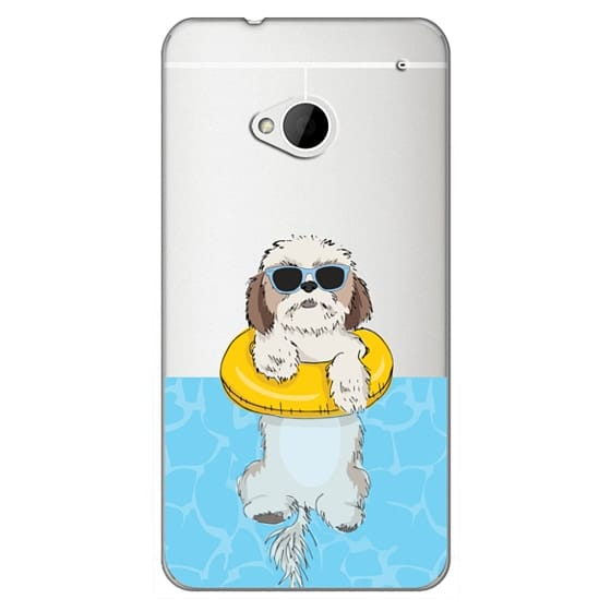 Swimming Shih Tzu