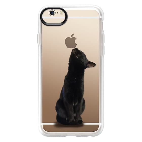 iPhone 6 Cases - The sniffing cat