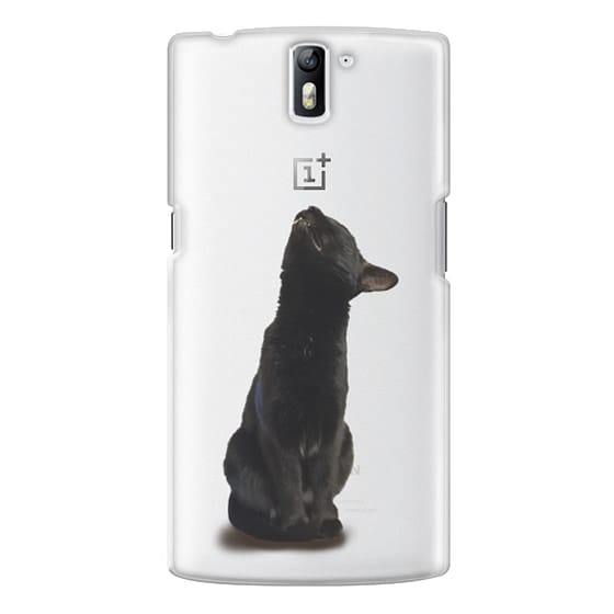 One Plus One Cases - The sniffing cat