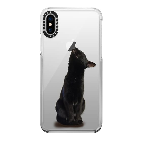iPhone X Cases - The sniffing cat