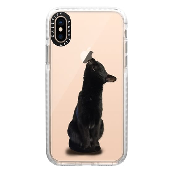 iPhone XS Cases - The sniffing cat