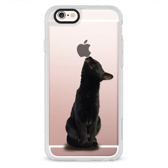 iPhone 4 Cases - The sniffing cat