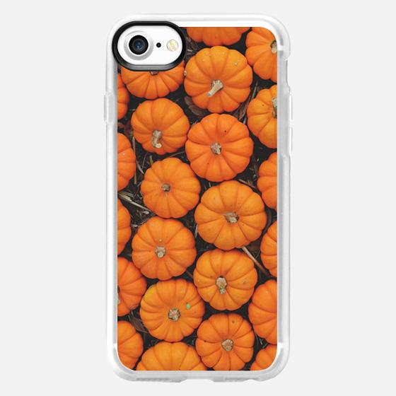 Pumpkin Patch -