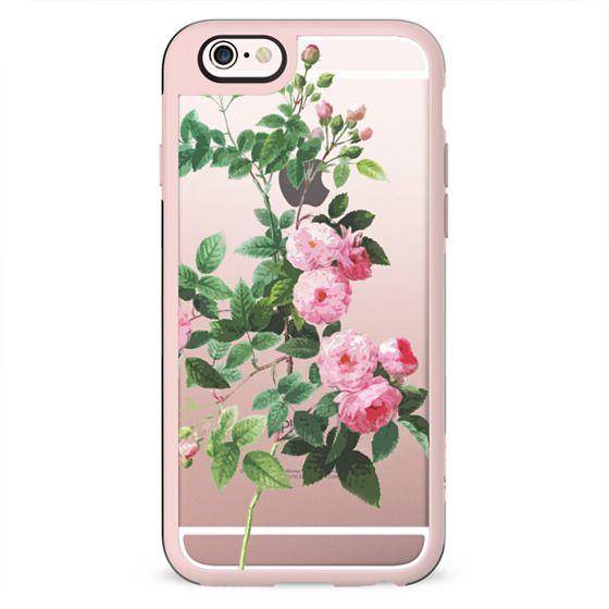 Pink rose botanical illustration clear