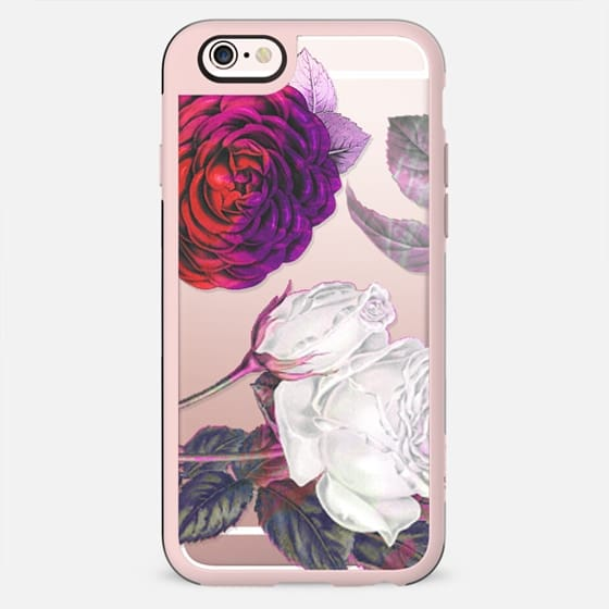 Pink white roses clear