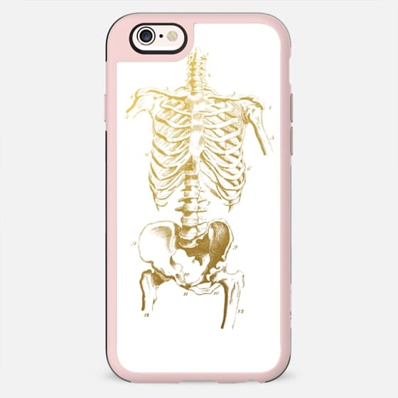 Human Skeleton - New Standard Case