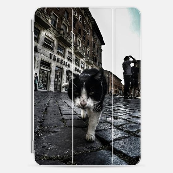 Street Cat - Photo Cover