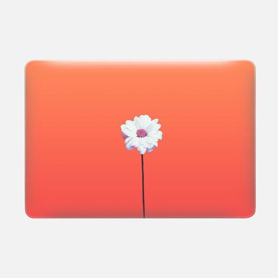 Artsy Pink Daisy Flower Red Orange Gradient Background  -