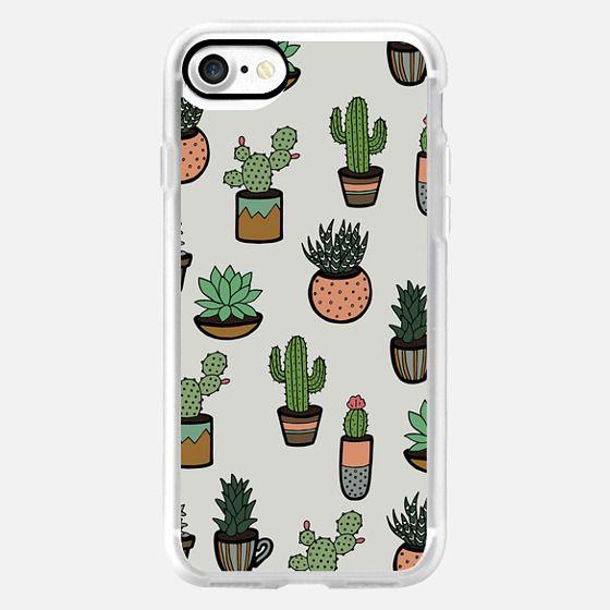 Cacti - Succulents -