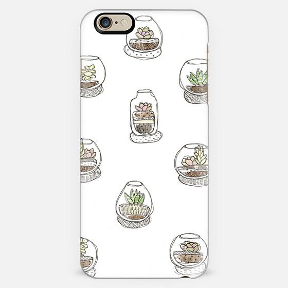 Cactus & Succulents. -