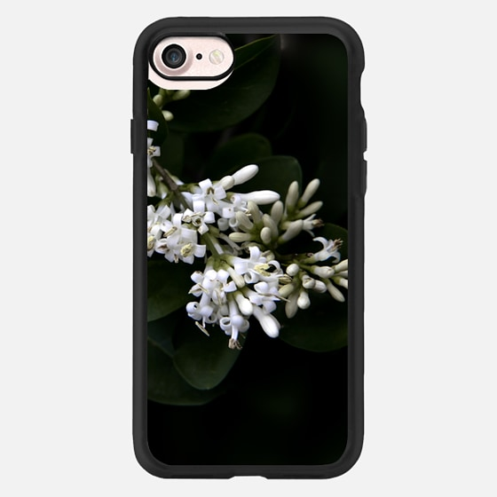 Flowers in white -